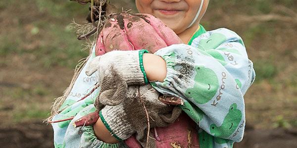 チビッコ農園でサツマイモを抱えてほほ笑む子供